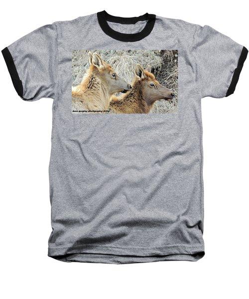 The Elk Of Winter  Baseball T-Shirt
