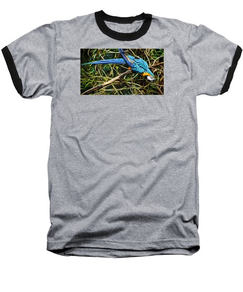 Baseball T-Shirt featuring the photograph The Enchanted Forest by Cameron Wood