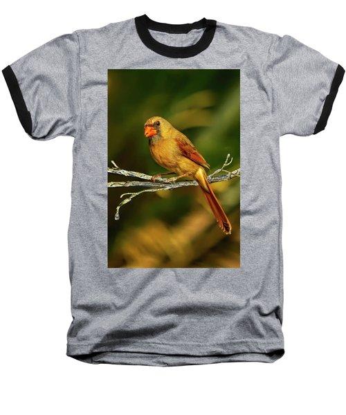 The Female Cardinal Baseball T-Shirt