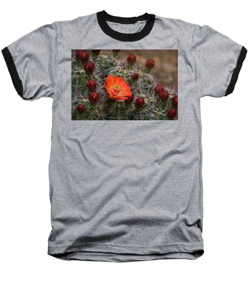 Baseball T-Shirt featuring the photograph The First Bloom  by Saija Lehtonen