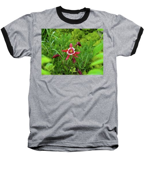 The Flowering Columbine Baseball T-Shirt