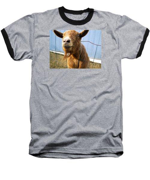 The Friendly Goat  Baseball T-Shirt by Sandra Church