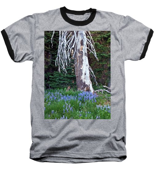 The Ghost Tree Baseball T-Shirt
