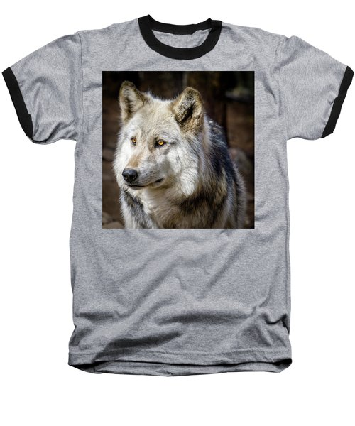 Baseball T-Shirt featuring the photograph The Gray Wolf by Teri Virbickis