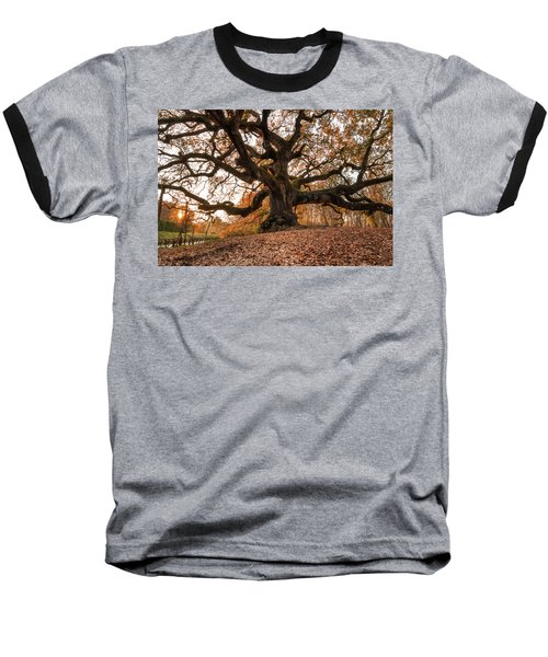 The Great Oak Baseball T-Shirt