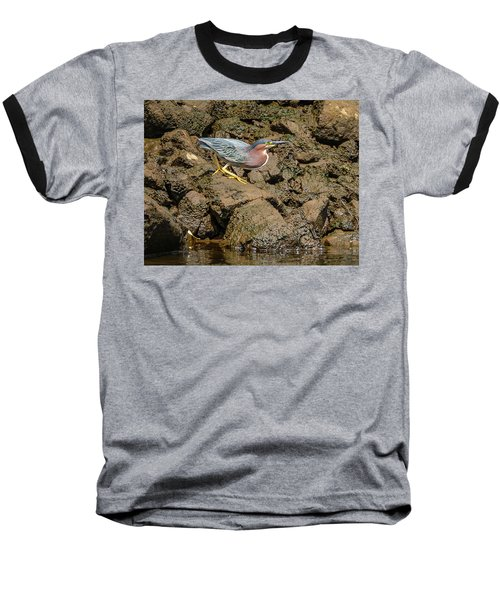 The Green Heron Baseball T-Shirt by Jerry Cahill