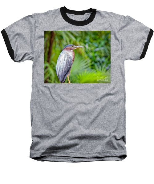 The Green Heron Baseball T-Shirt