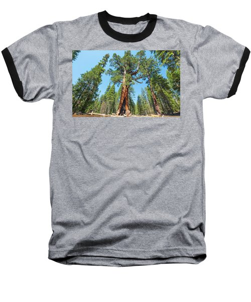 The Grizzly Giant- Baseball T-Shirt