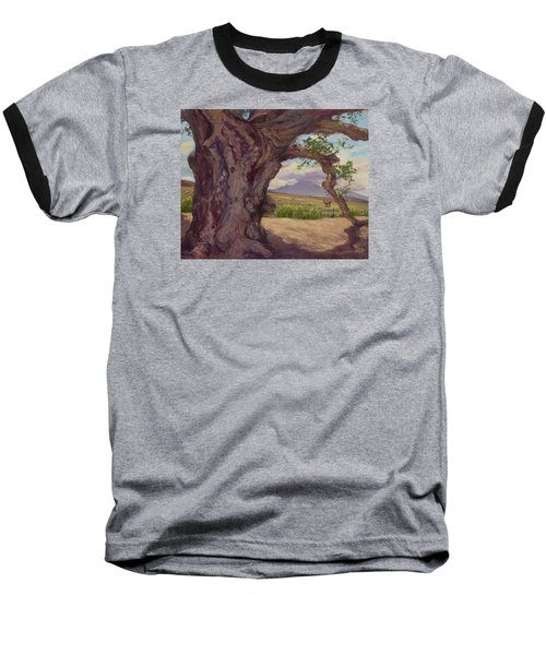 The Guardian Baseball T-Shirt by Jane Thorpe
