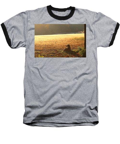 The Guardian Baseball T-Shirt by Sheila Brown