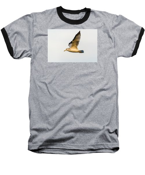 Baseball T-Shirt featuring the photograph The Gull In Flight by Yeates Photography