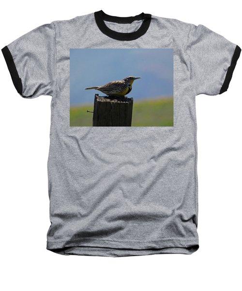 The Hawk Squat Baseball T-Shirt