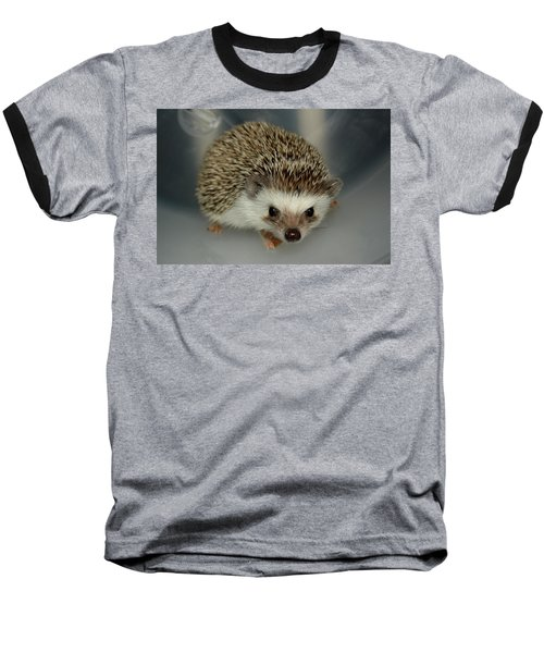 The Hedgehog Baseball T-Shirt