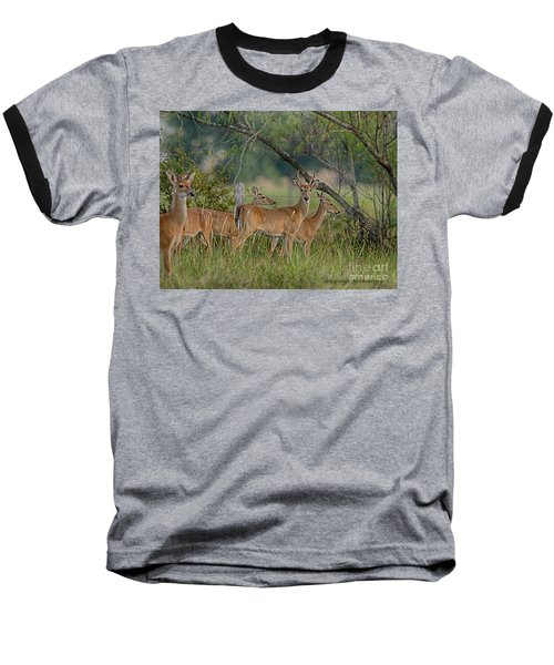 The Herd Baseball T-Shirt
