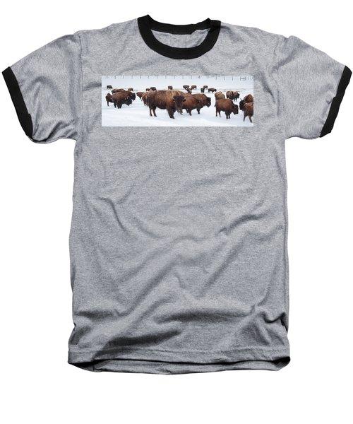 The Herd Baseball T-Shirt