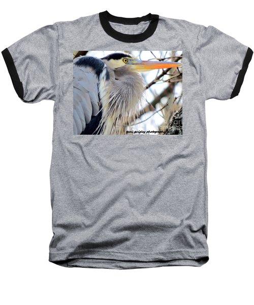 The Heron In Winter  Baseball T-Shirt