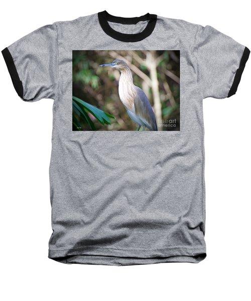 The Heron Baseball T-Shirt by Judy Kay