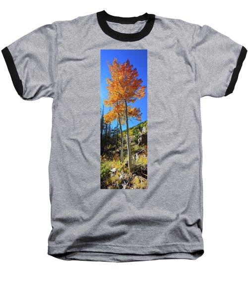 The Hillside - Panorama Baseball T-Shirt
