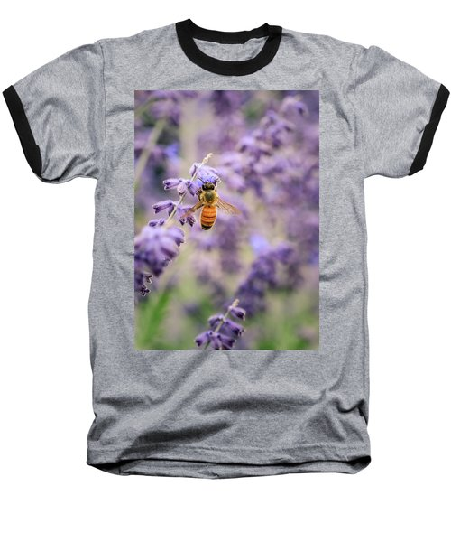 The Honey Bee And The Lavender Baseball T-Shirt