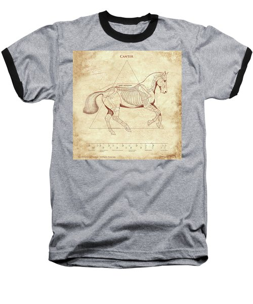 The Horse's Canter Revealed Baseball T-Shirt