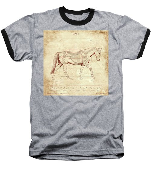The Horse's Walk Revealed Baseball T-Shirt by Catherine Twomey