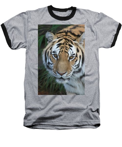 Baseball T-Shirt featuring the photograph The Hunter by Laddie Halupa