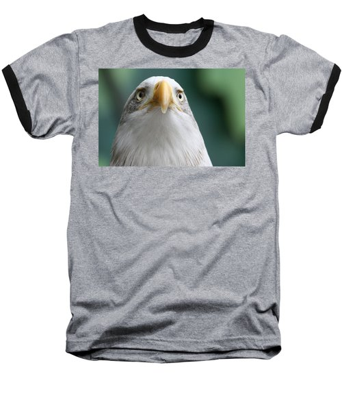 Baseball T-Shirt featuring the photograph The Hunters Stare by Laddie Halupa