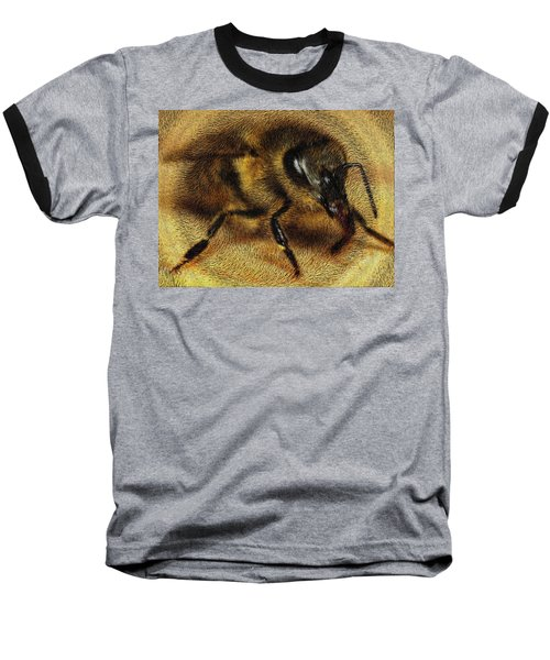 The Killer Bee Baseball T-Shirt by ISAW Gallery