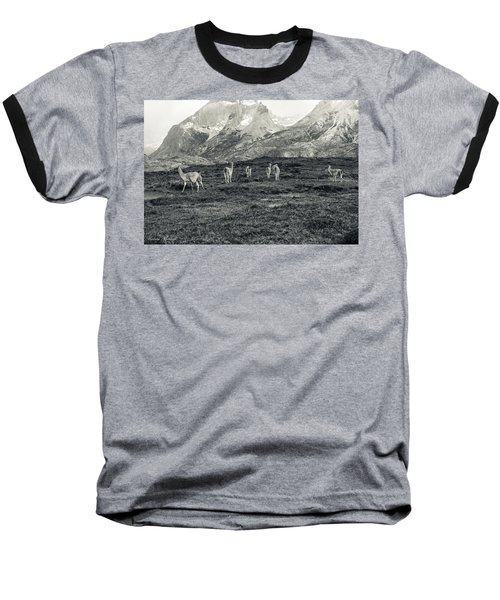 Baseball T-Shirt featuring the photograph The Lamas by Andrew Matwijec