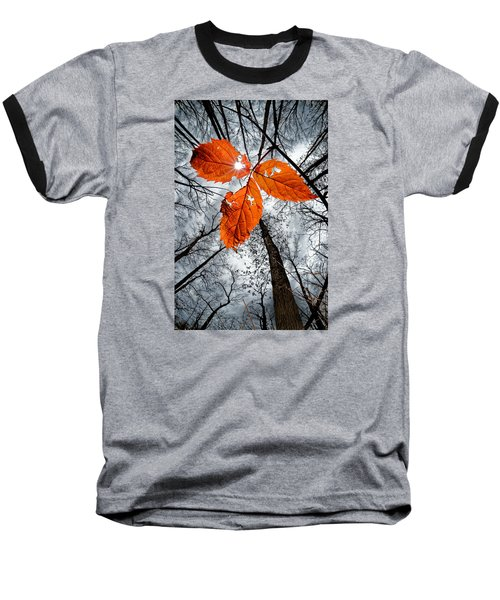 The Last Leaf Of November Baseball T-Shirt by Robert Charity