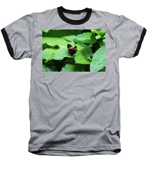 The Leaf Is My Plate Baseball T-Shirt