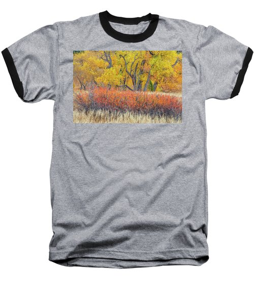 The Leaves That Will Become The Essential Component Of Soil Called Humus  Baseball T-Shirt