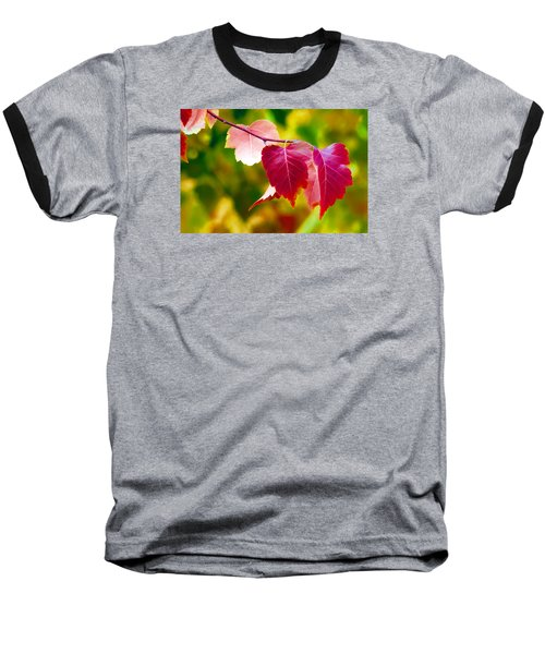 Baseball T-Shirt featuring the digital art The Little Things That Bring So Much Joy by James Steele