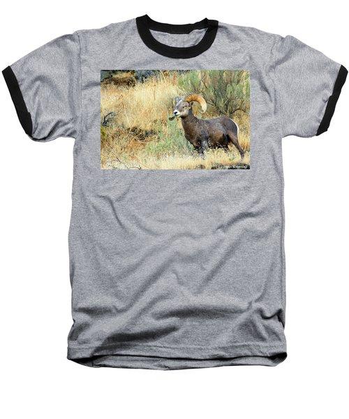 The Loner II Baseball T-Shirt