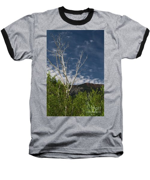 The Lonely Aspen  Baseball T-Shirt