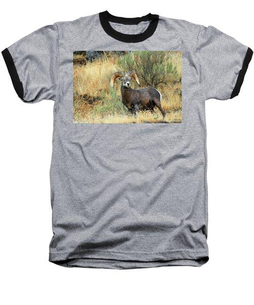 The Loner Baseball T-Shirt
