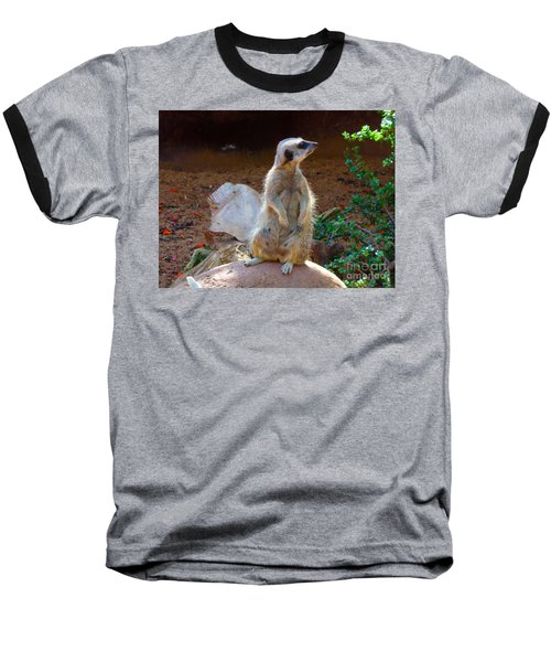 The Lookout - Meerkat Baseball T-Shirt