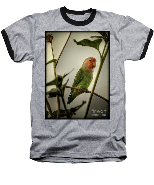 The Lovebird  Baseball T-Shirt by Saija  Lehtonen