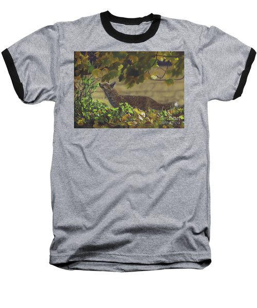 The Fantastic Mr Fox Baseball T-Shirt