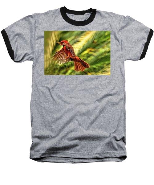 The Male Cardinal Approaches Baseball T-Shirt