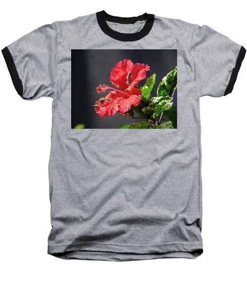 The Mallow Hibiscus Baseball T-Shirt
