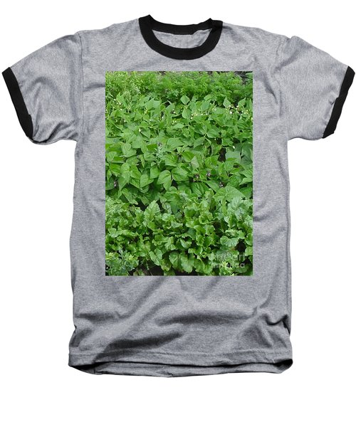 The Market Garden Portrait Baseball T-Shirt