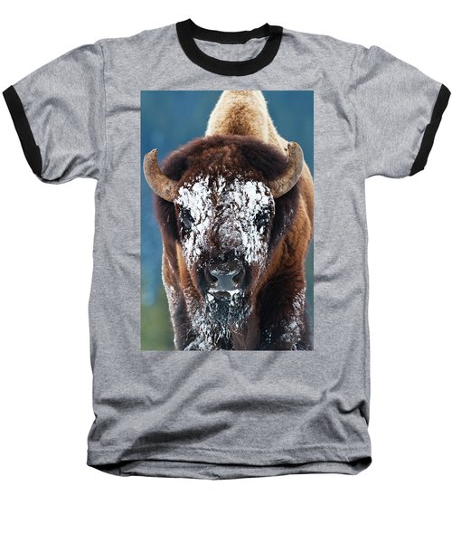 The Masked Bison Baseball T-Shirt