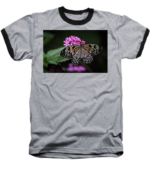 The Master Calls A Butterfly Baseball T-Shirt