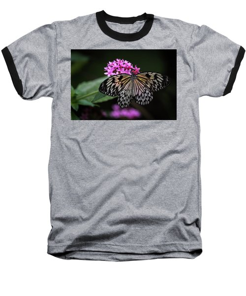 The Master Calls A Butterfly Baseball T-Shirt