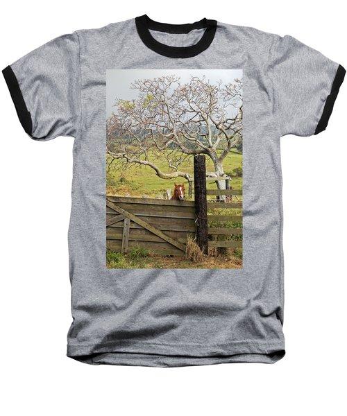 The Maui Daze Baseball T-Shirt