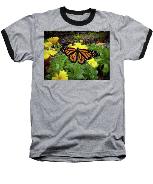 The Mighty Monarch  Baseball T-Shirt