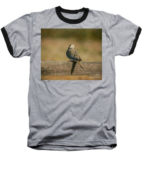The Morning Dove Baseball T-Shirt