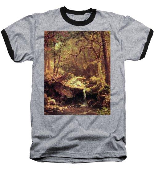 The Mountain Brook Baseball T-Shirt by Albert Bierstadt