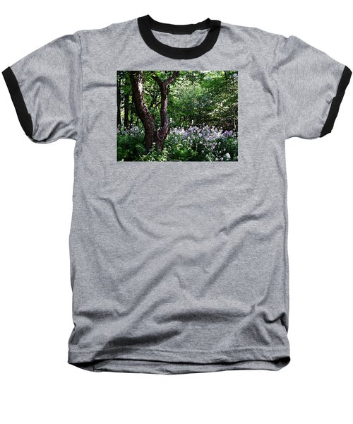 The Old Apple Tree, Fiddlehead Ferns And Wild Phlox Baseball T-Shirt